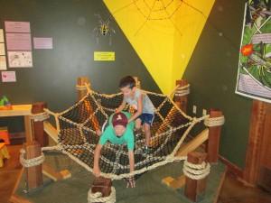 Spiderweb fun!