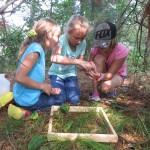 Examining worms!