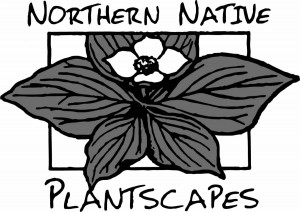 Northern Native Plantscapes
