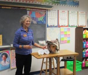 Fourth Grade: Owls