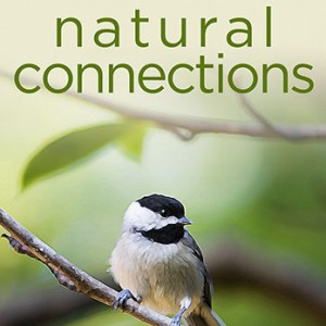 Natural Connections - Book by Emily Stone
