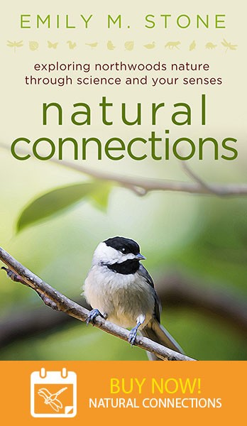 Natural Connections – Book by Emily Stone